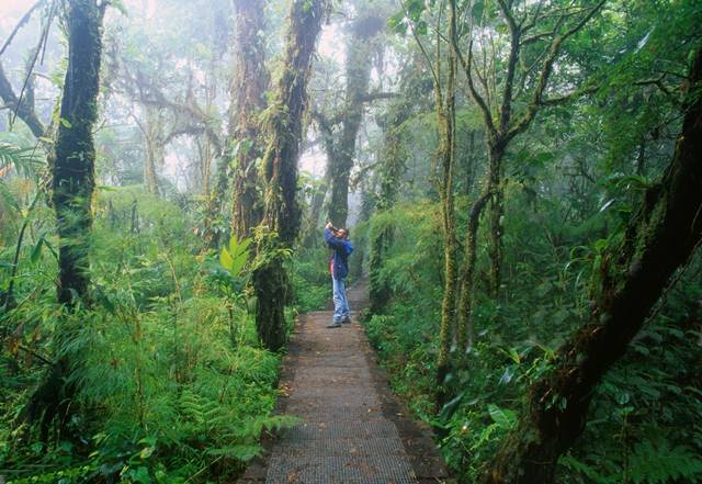 Monteverde Cloud Forest Vacation Package