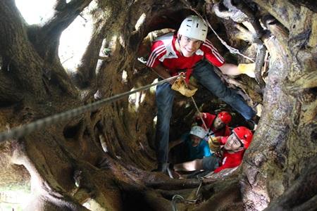 Tree-Top- Climbing-monteverde