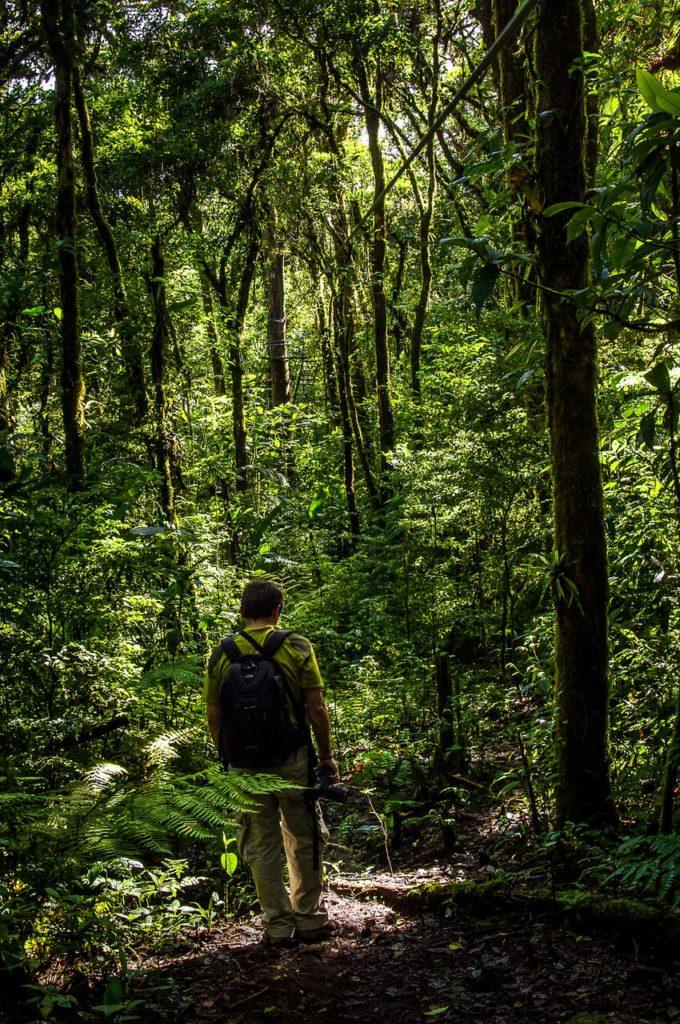 monteverde-park