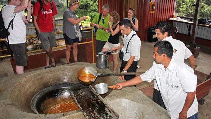 trapiche coffee tour monteverde cloud forest