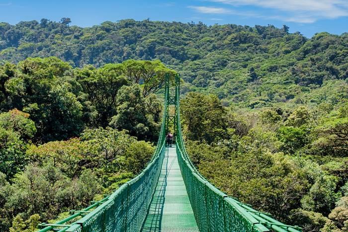 Selvatura Park Monteverde Cloud Forest Hanging Brdges 1
