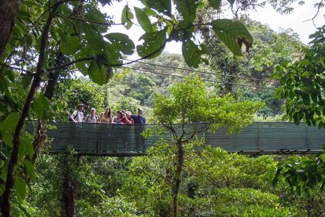 Sky Walk Monteverde Cloud Forest