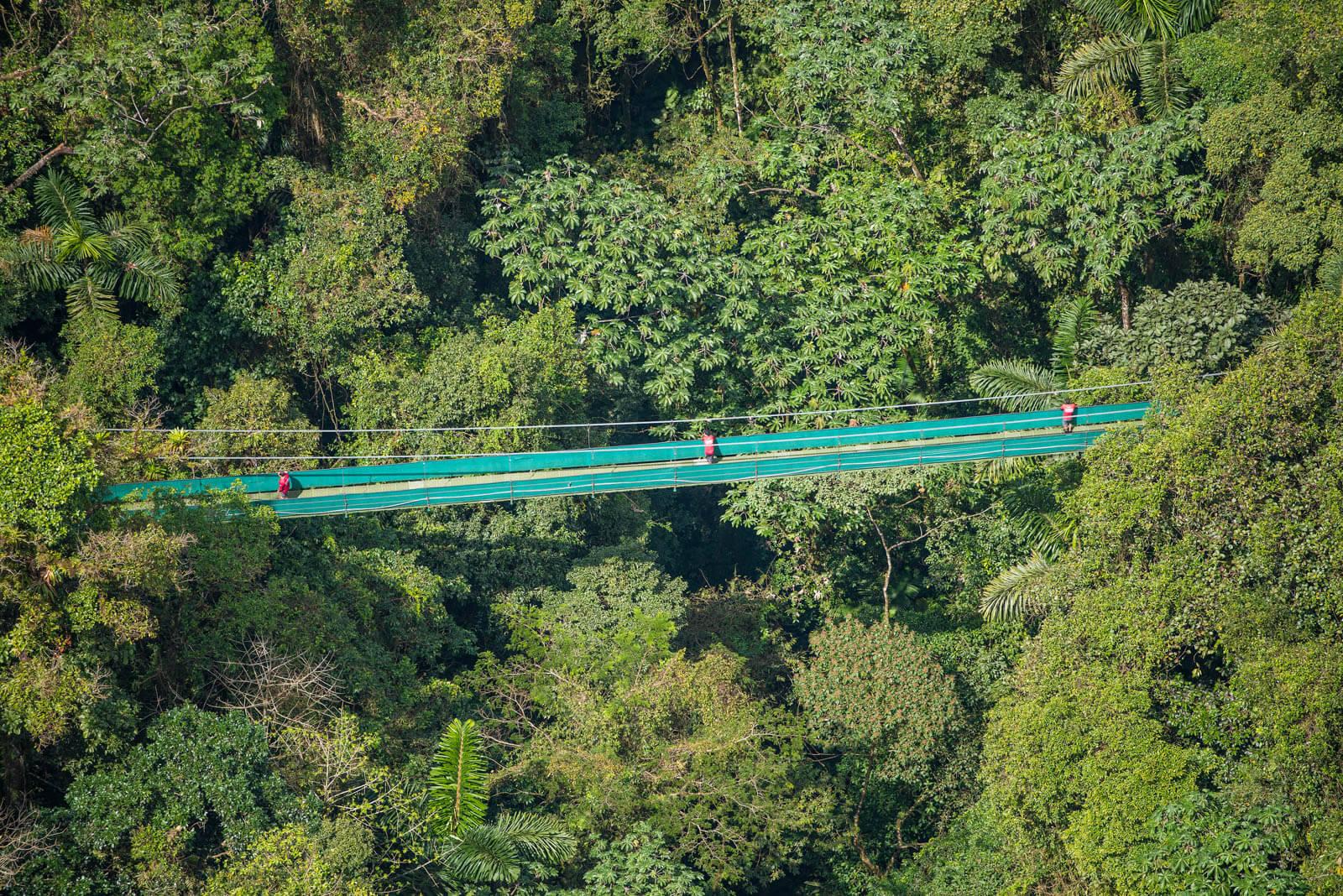 Monteverde Sky Walk & Hanging Bridges