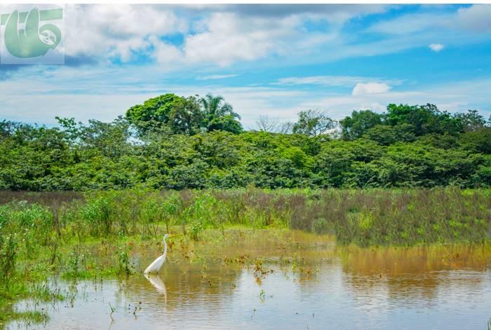 Caño Negro Wildlife Refuge tour from La Fortuna Arenal Volcano Costa Rica