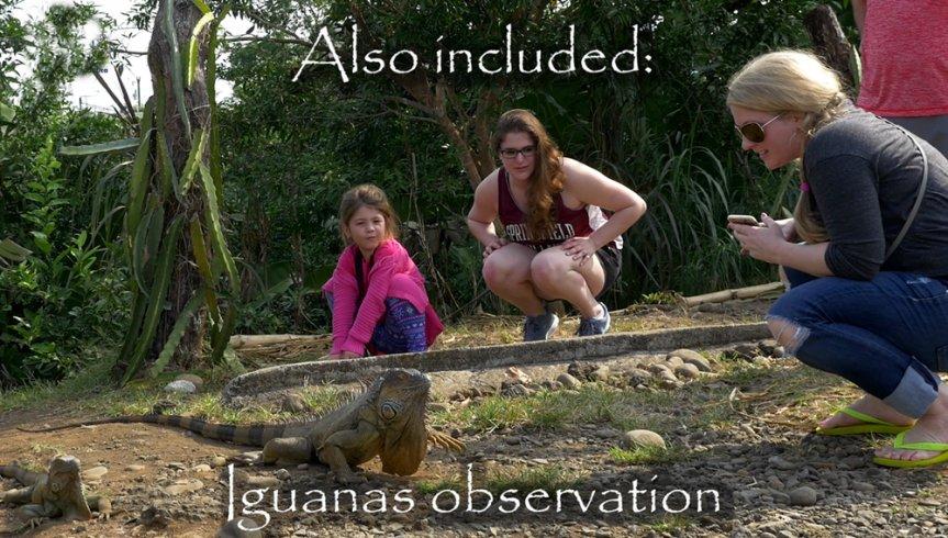 Cano Negro Wildlife Refuge Tour