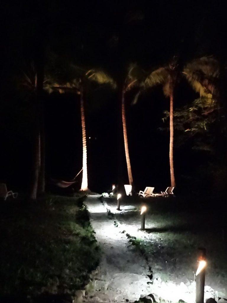 Costa Rica Bioluminescent kayak tour 6