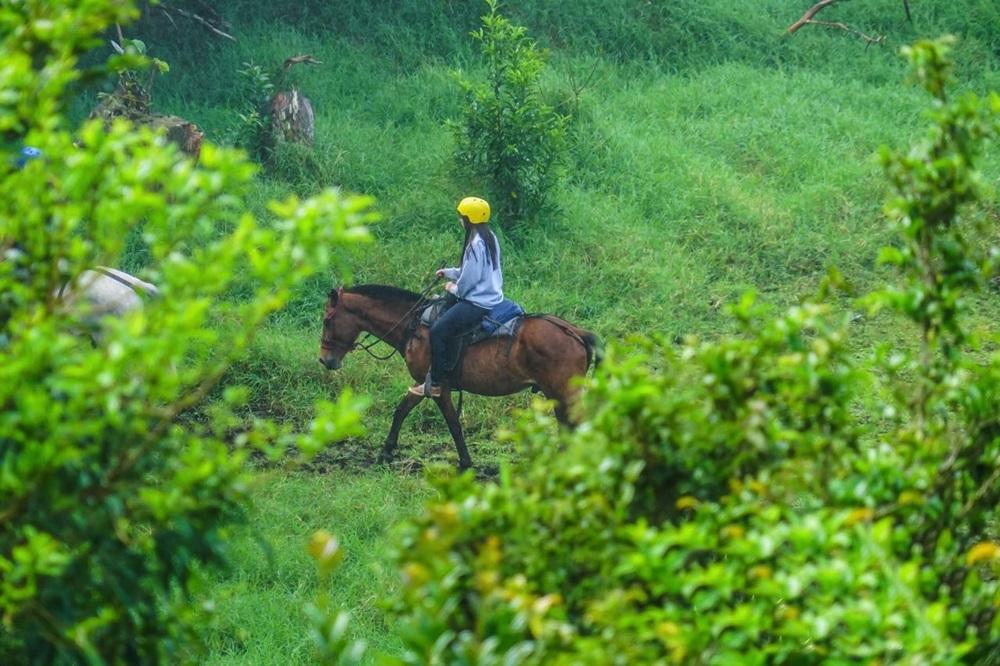 Horse Ride Arenal Monteverde