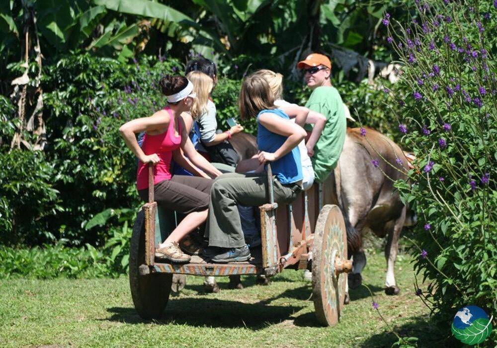 Monteverde One day Tour Guanacaste