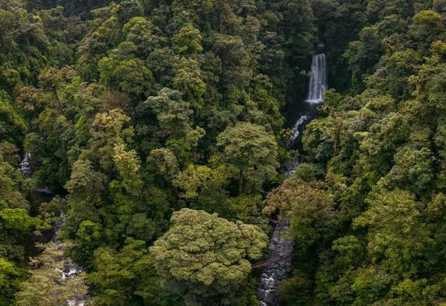 Tigre Waterfalls Monteverde Cloud Forest Tour 4