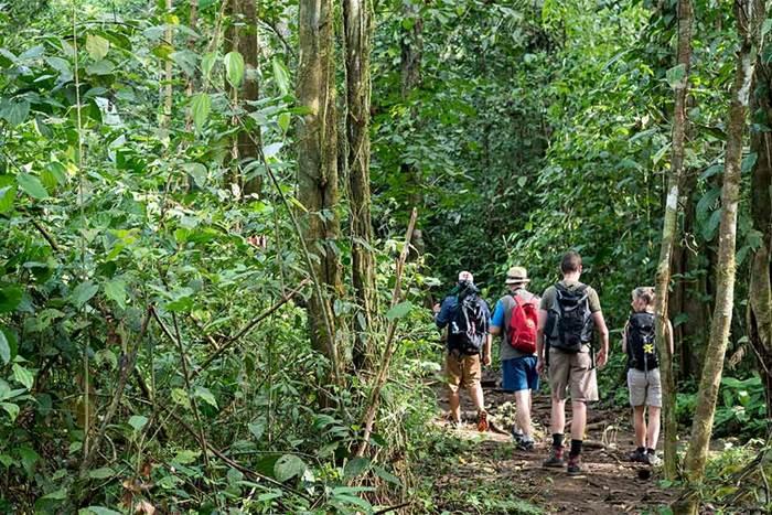 Tour Sirena Biological Station | Corcovado National Park