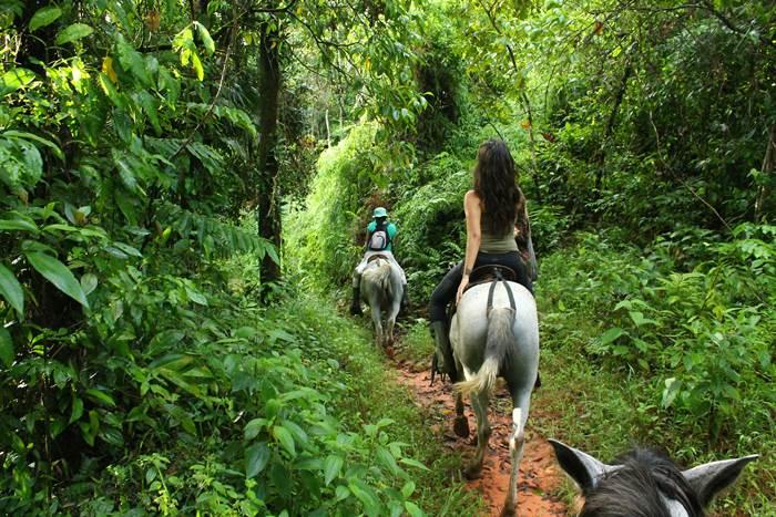 Horseback Riding Drake Bay Corcovado