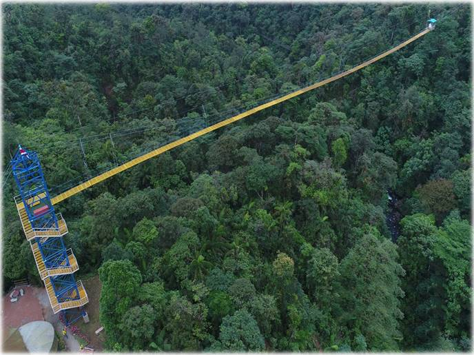 Costa Rica eco bungee