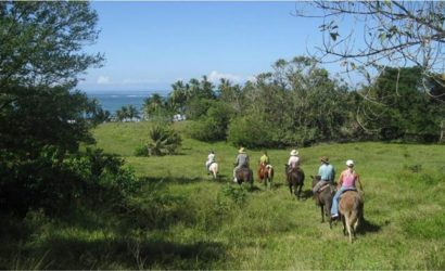 horseback riding in santa teresa & Mal Pais costa rica