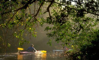 Kayak Puerto viejo talamanca