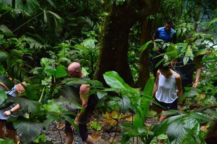 Arenal Volcano Hike Tour Costa Rica