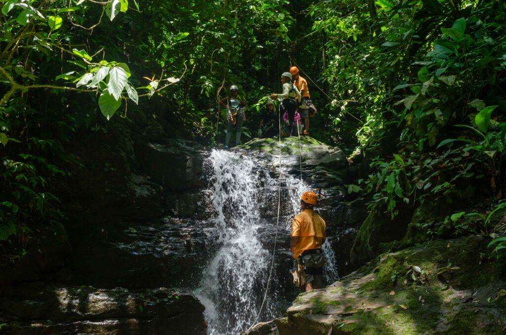 jungle adventure tour puerto viejo costa rica talamanca