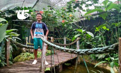 Serpentario sarapiqui costa rica tour & things to do